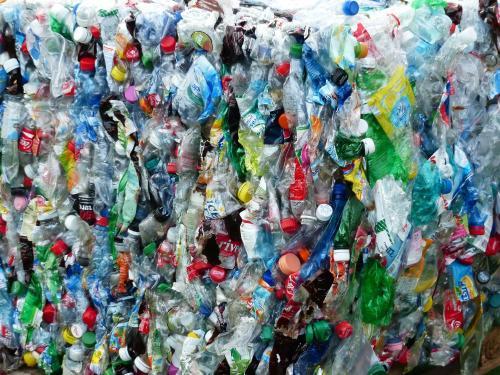 Reciclaje de plástico: cómo es el proceso, plantas y manualidades
