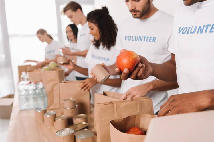 voluntarios preparan una comida sustentable