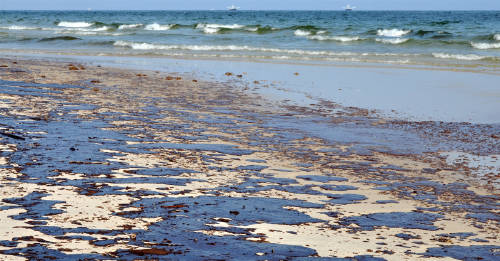 525 toneladas de petróleo contaminan las playas de la costa brasileña