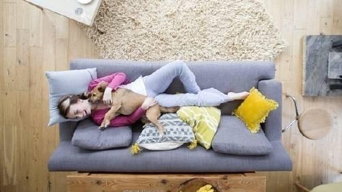 Un estudio explica por qué amas a tu mascota como si fuera un hijo