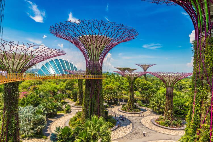 ciudad verde singapur