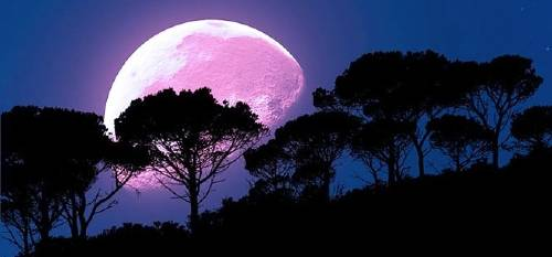 En abril habrá luna rosa: ¿Cómo te afectará a ti?