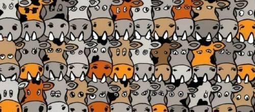 Test visual: encuentra el perro oculto entre las vacas en menos de 10 segundos