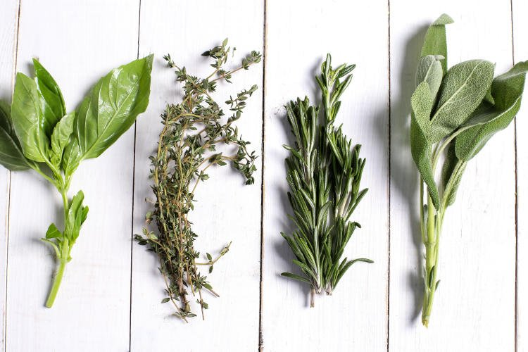 different-herbs-in-white-wooden-table-top-view