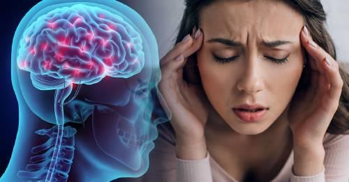 Lo que comes puede impactar tu cerebro y memoria