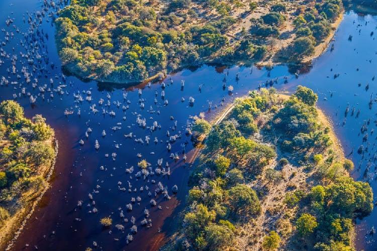 humedales delta okavango botsuana