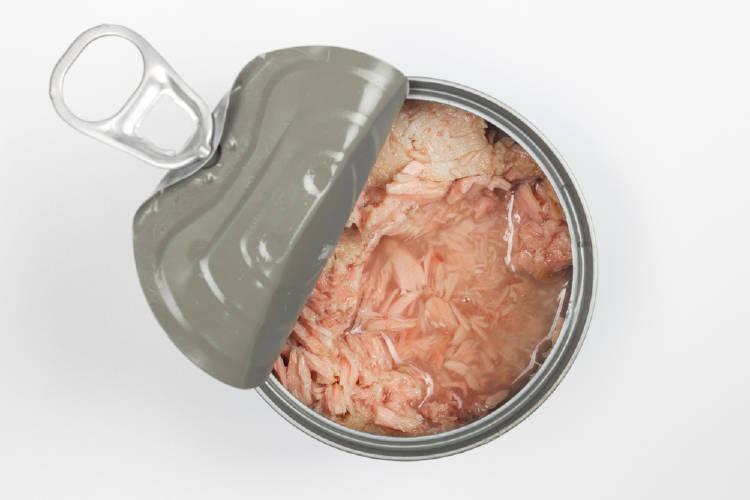 mercurio en el atun en lata