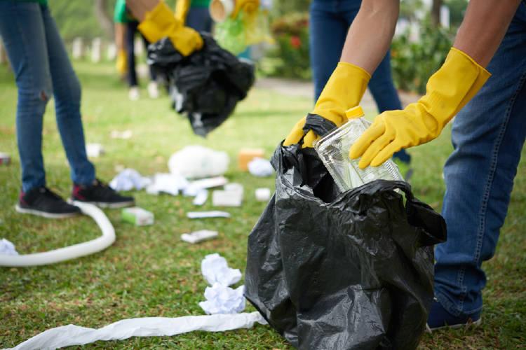 recoleccion de basura, limpieza del entorno natural