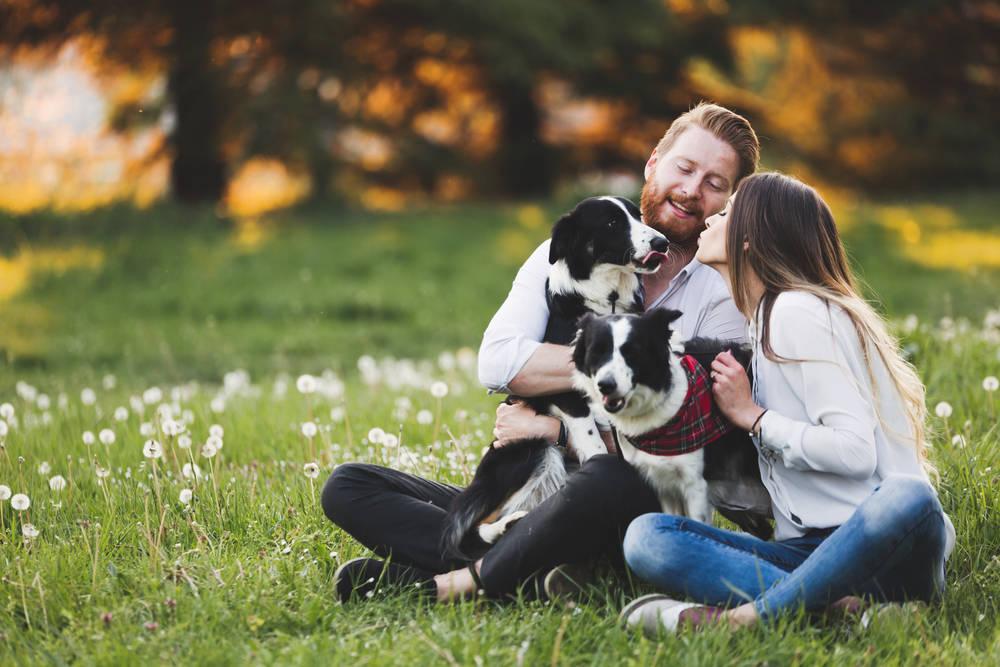 La muerte de una mascota es tan dolorosa como despedir a un ser querido