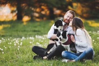 una pareja y sus perros disfrutan al aire libre