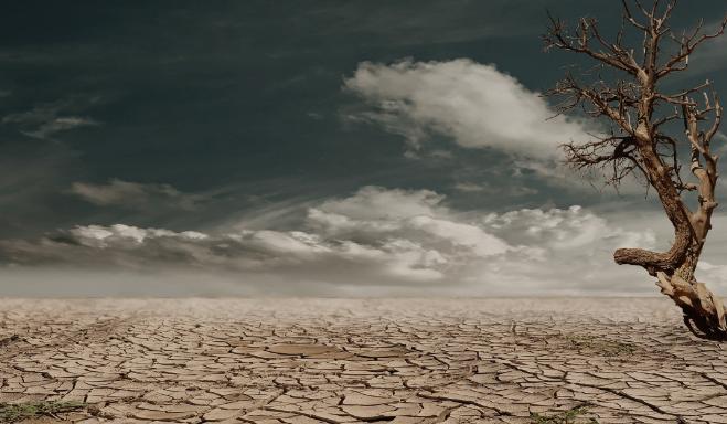 ¿Qué es un problema ambiental?: Causas y consecuencias