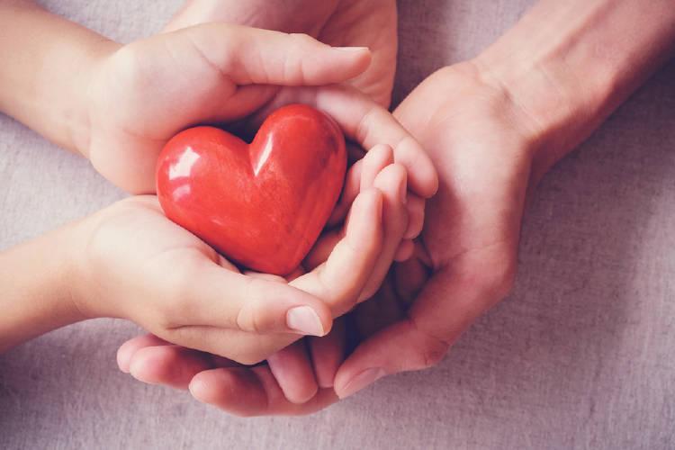 Cuatro manos sosteniendo un corazón rojo