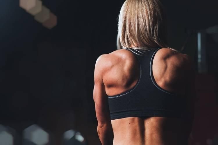 musculo ejercicio