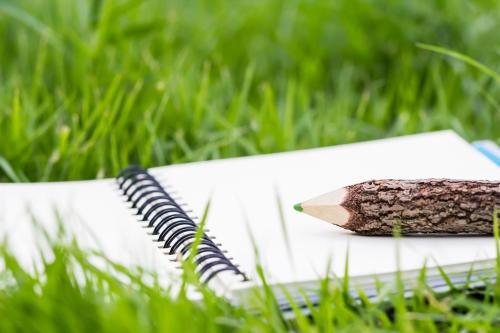 Educación ambiental: ¿qué es y cómo ponerla en práctica?