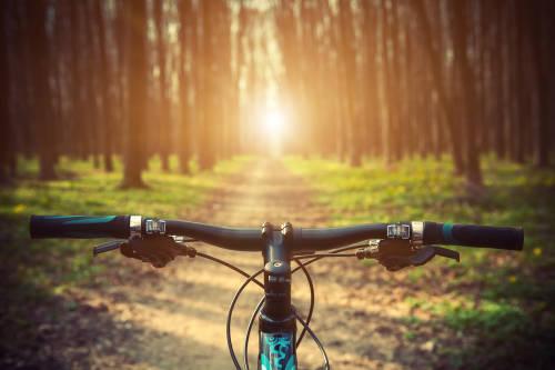 Los beneficios de andar en bicicleta van mucho más allá de la salud física