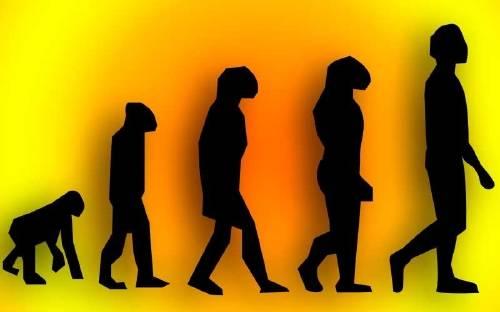 Los científicos observan por primera vez como nace una nueva especie y es alu..