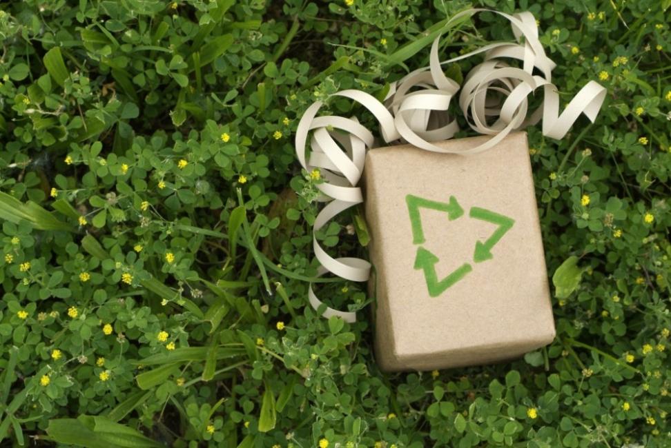 Árbol de navidad con botellas de plástico - navidad sustentable