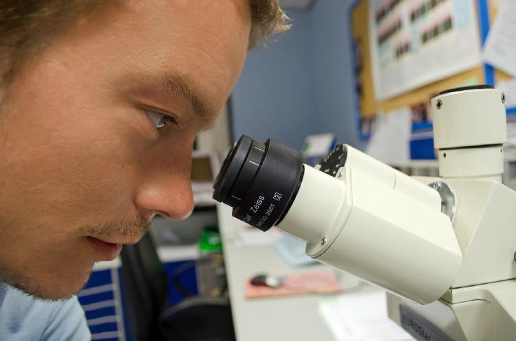 Vacuna de Oxford es capaz de activar el sistema inmune