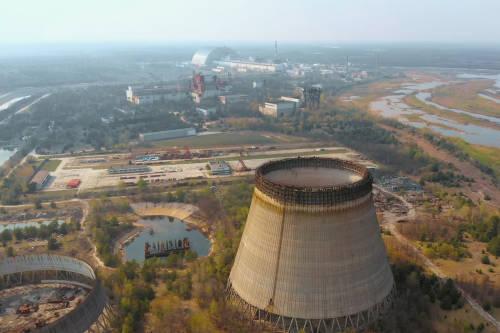 Un hongo de Chernóbil transforma la radiación en energía