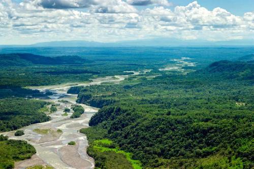 El Amazonas libera más carbono del que absorbe, agravando el efecto invernadero