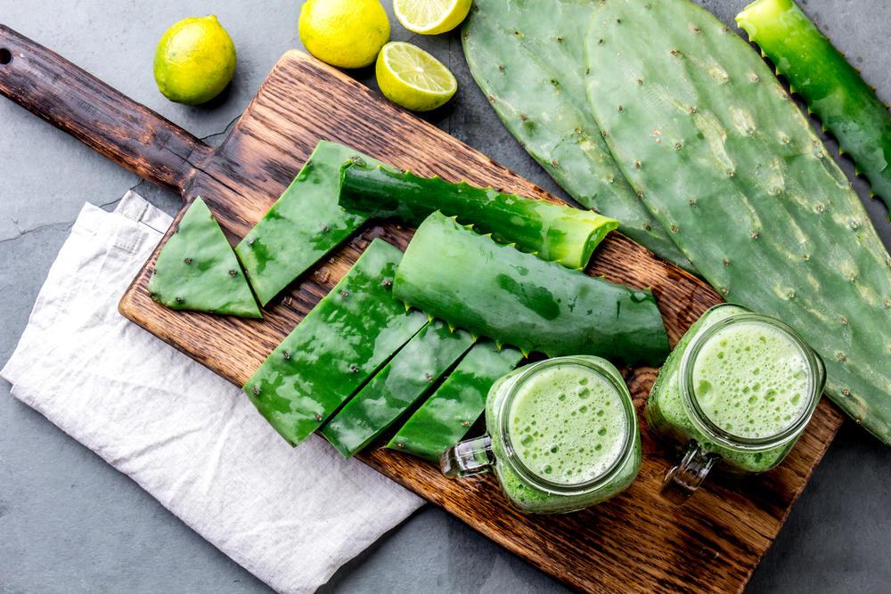 Cactus comestibles: variedades a elegir y propiedades de cada una
