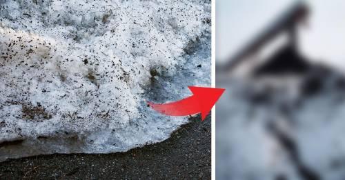 ¿Qué es y de dónde viene la nieve negra que cubre Siberia?