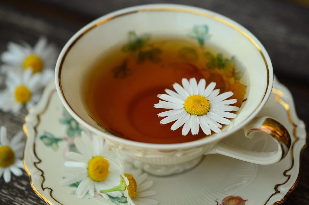 Té de manzanilla: cuáles son sus beneficios, propiedades y para qué sirve