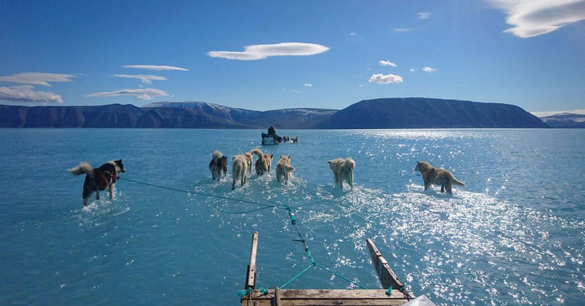 Qué se esconde detrás de la foto viral del deshielo en Groenlandia