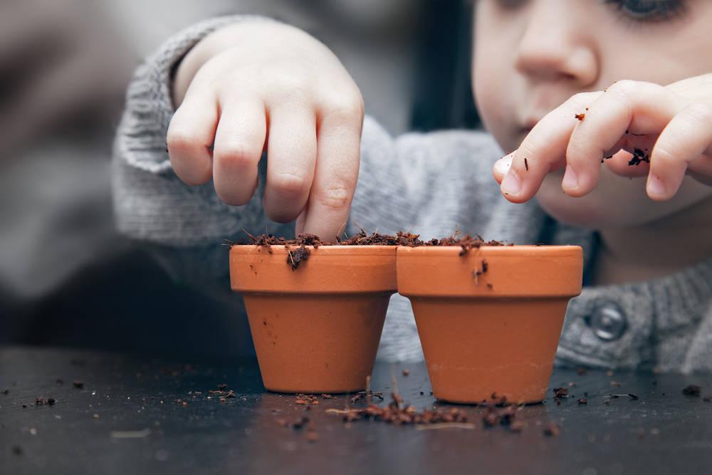 Agricultura para niños: una estrategia de educación ecológica