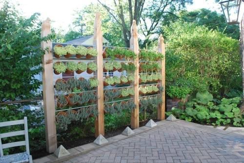 Ideas para crear divisiones verdes en tu jardín