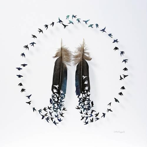 Obras de arte recortadas sobre plumas