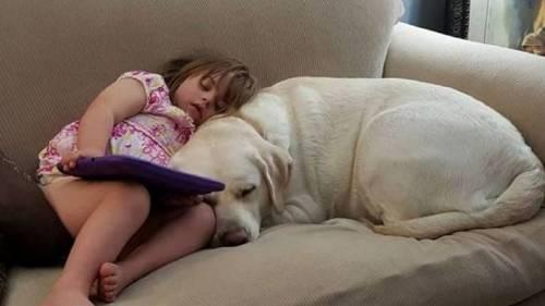 Ella es Sadie y él es su perro, su niñera y su enfermero personal