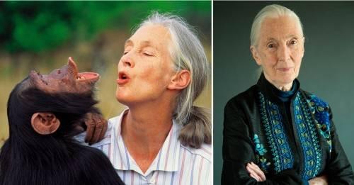 La conservacionista Jane Goodall ganó el Premio Templeton en ciencia