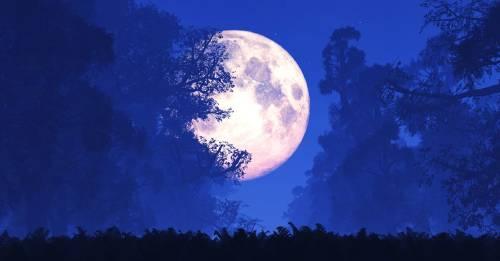 Viene la Superluna más grande del año