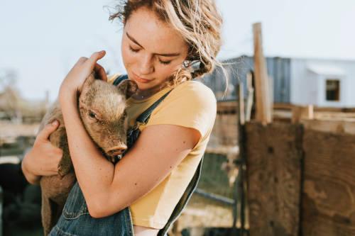 3 cuentas de Instagram a seguir si quieres dejar los productos de origen animal