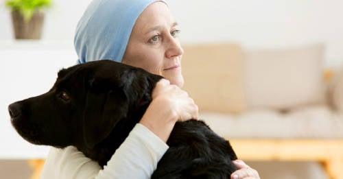 Un hospital de Canadá permite que las mascotas visiten a sus dueños para que se curen más rápido