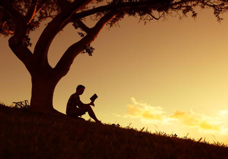 hombre leyendo parque