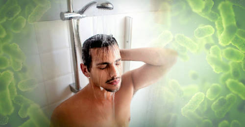 Esta parte de la ducha posee más gérmenes de lo que imaginas