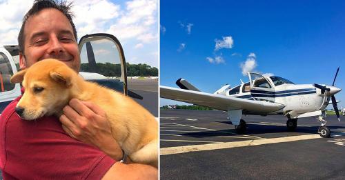 Este hombre compró un avión para rescatar a cientos de animales de los refugios