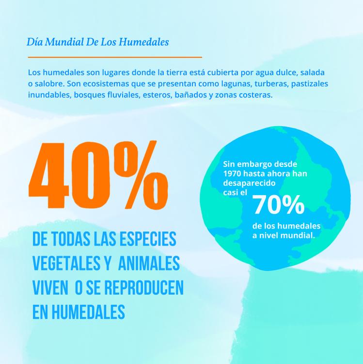 infografia humedales