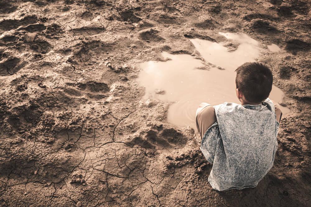 ¿Cuál es el impacto de la emergencia climática en los jóvenes?