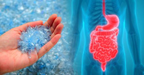 Un estudio revela la cantidad de plástico que tragas sin querer