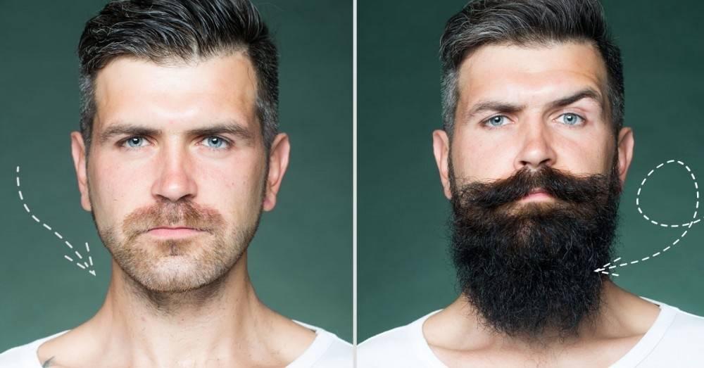 6 alimentos que te ayudarán a estimular el crecimiento de tu barba
