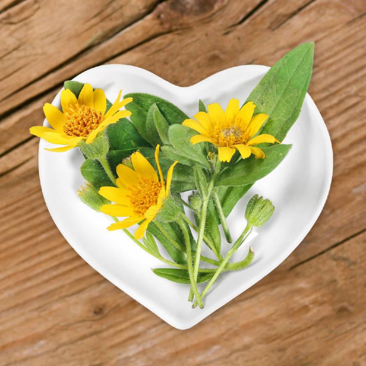 flores de arnica sobre un plato en forma de corazón