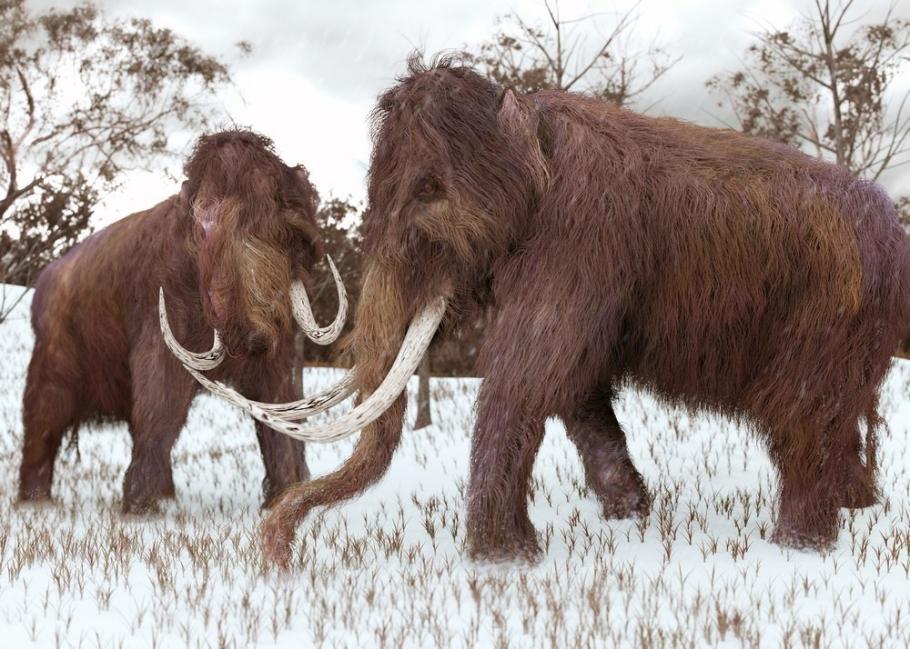 recreación de un mamut