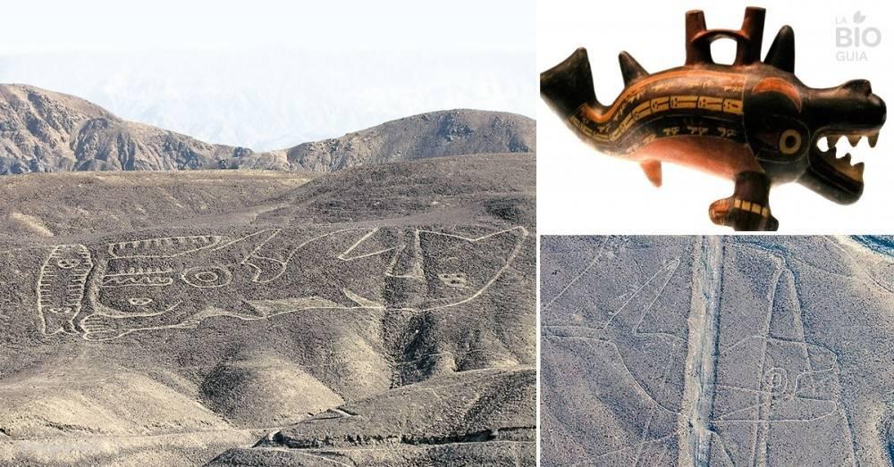 Perú: este enigmático hallazgo se creía perdido para siempre, pero lo acaba..