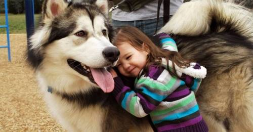 Estudio sugiere que darle una mascota a un niño podría convertirlo en vegeta..