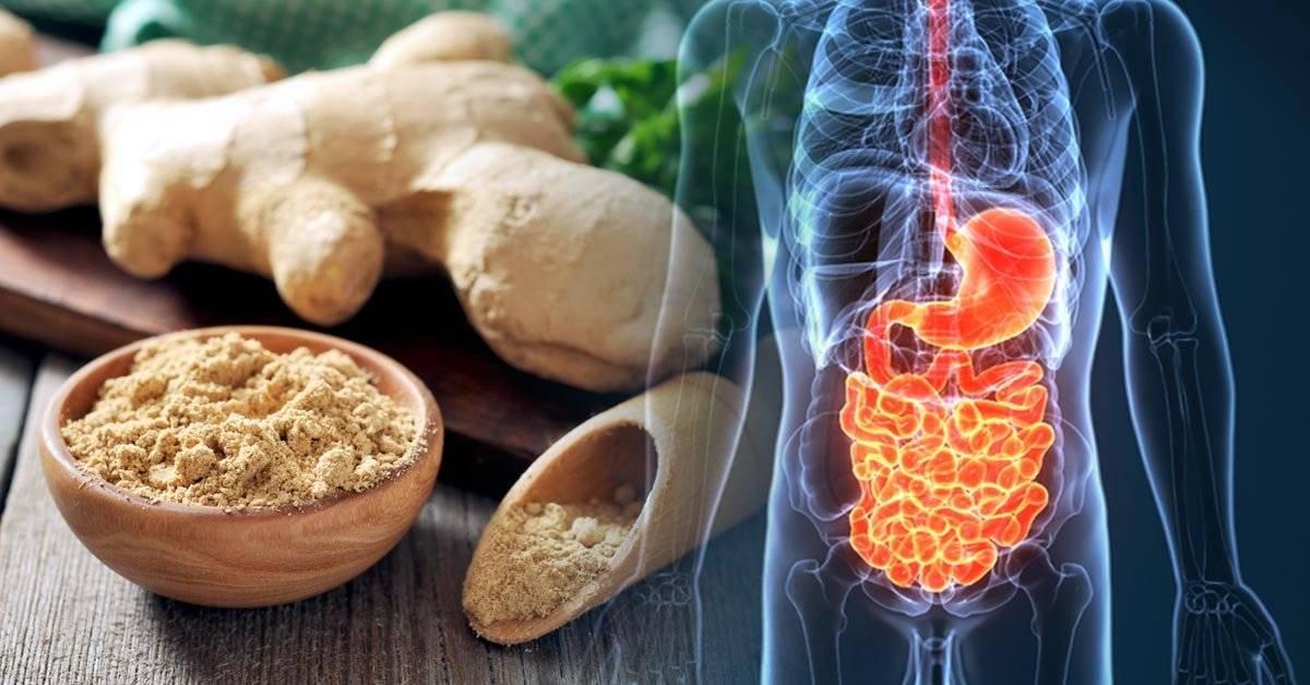 16 antibióticos naturales que debes añadir a tu alimentación