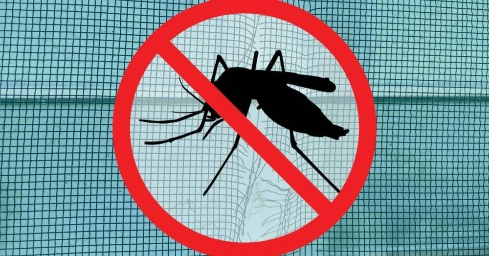 ¿Está bien exterminar a los mosquitos para salvar a millones de personas?