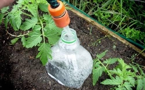 Cómo hacer riego por goteo para las plantas de manera casera y económica
